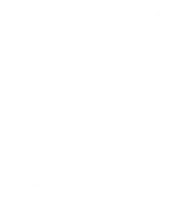 madrid-fusion_logo_b